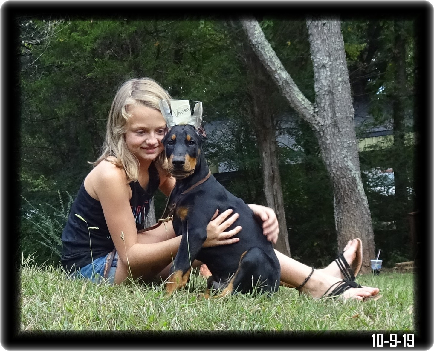 Vader - Greta & Caspian pup born 7-21-19 ...Super Pup 2 now home in  Mooresville FL - Established client
