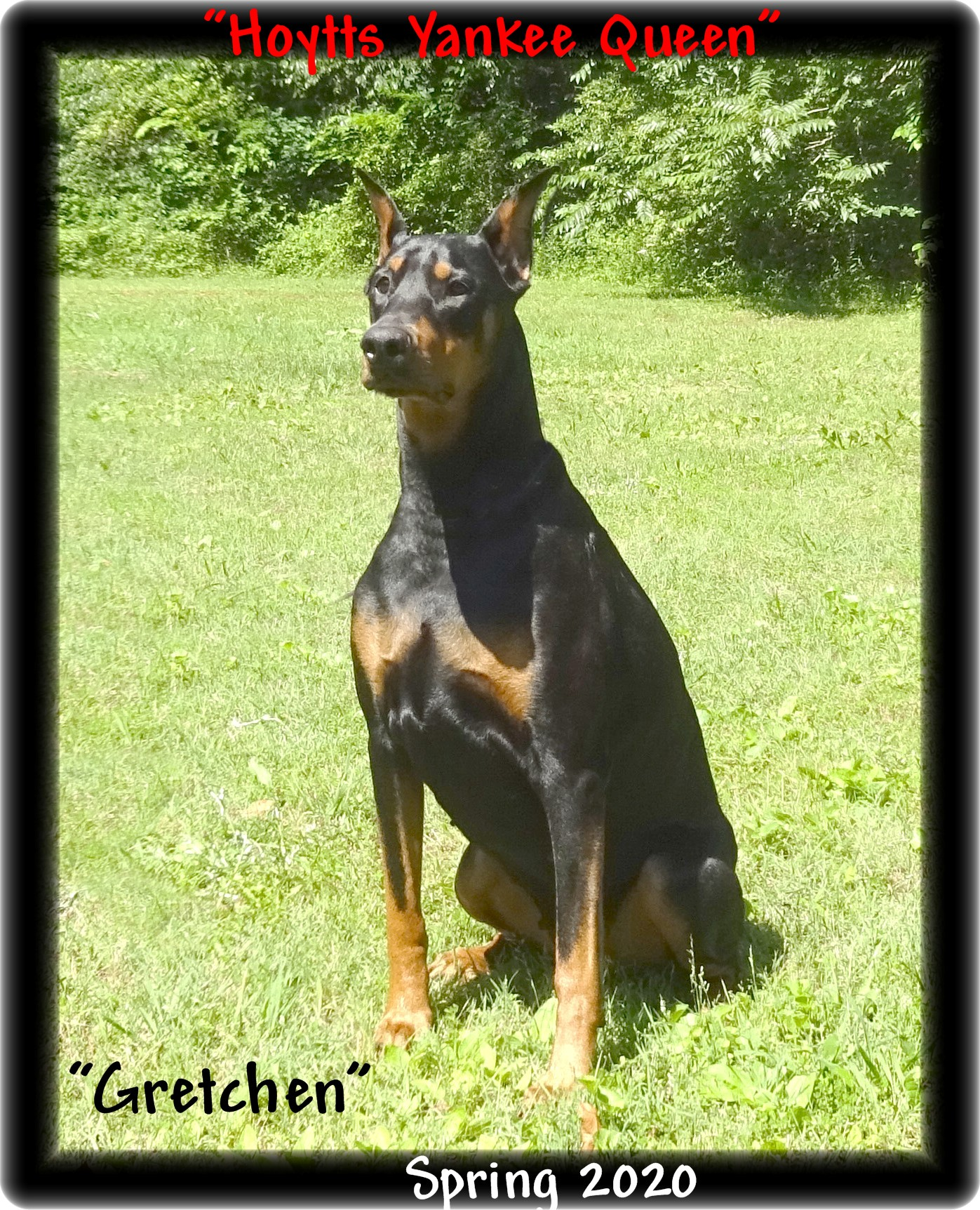 gretchen-breeding-015.jpg
