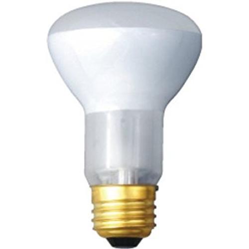 Standard 45W Frosted Incandescent Reflector Flood Lamp 130V 2 Pack