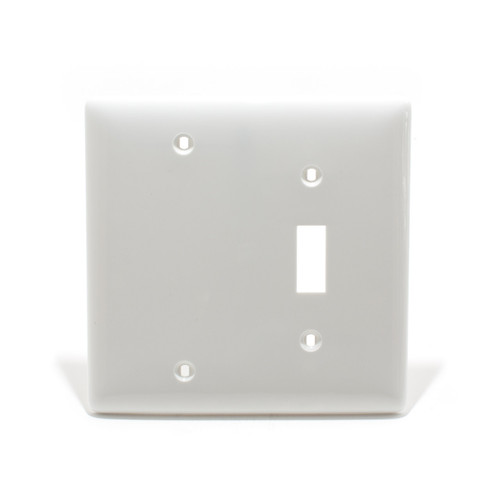 Combination Plate, Blank + Toggle, 2 Gang, White, Nylon