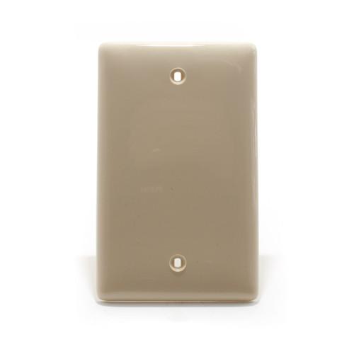 Blank Plate, 1 Gang, Ivory, Nylon