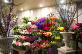 Pure Flowers is Celebrating! 25 years in Lane Cove