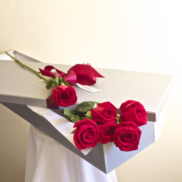 six long stemmed red roses presented in a gift box
