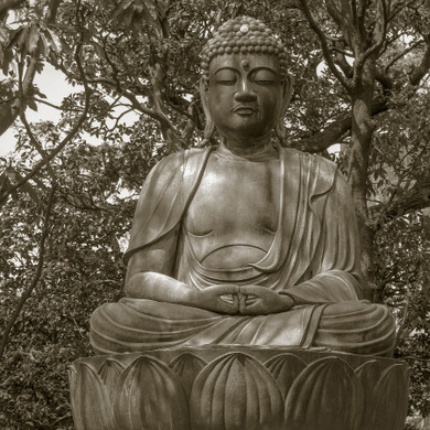 Buddha in the Trees Tokyo Japan by Alison Lake