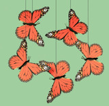 Monarch Butterfly Mobile. Create a custom mobile from any animal from our Monarch Mobiles collection.