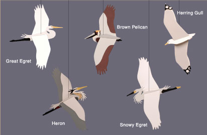 Skyflight Coastal Birds Mobile