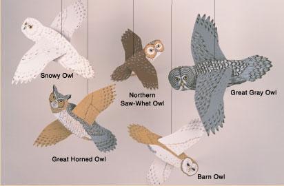 Skyflight Owls Mobile