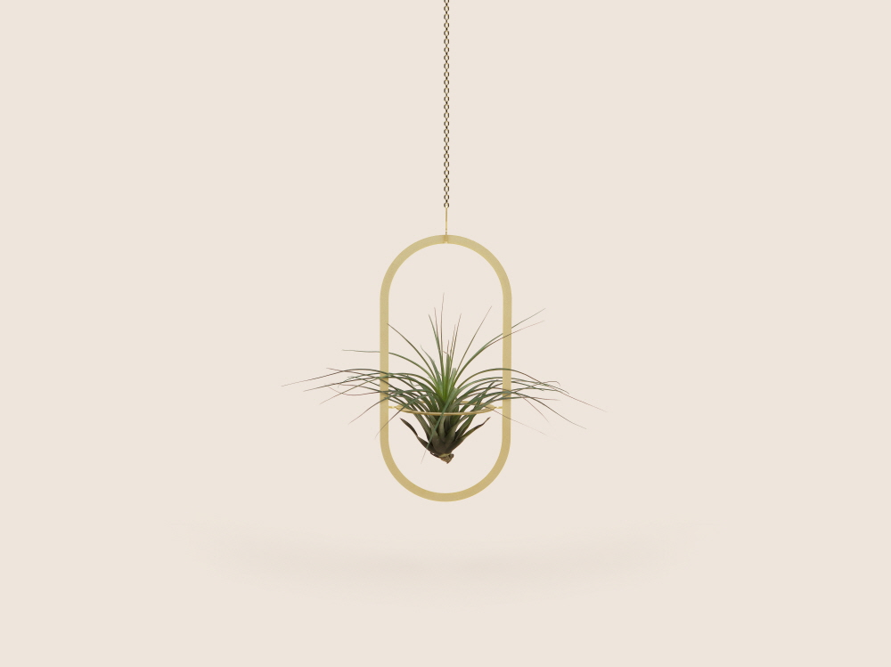 Small Good Things Oval Plant Mobile, Gold