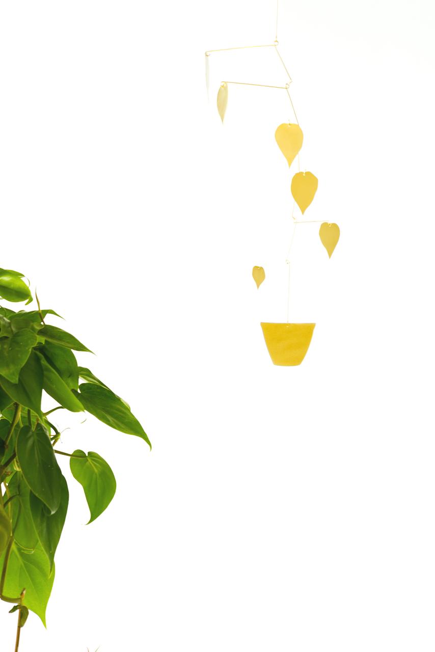 Natalie Joy Philodendron Scandens Mobile