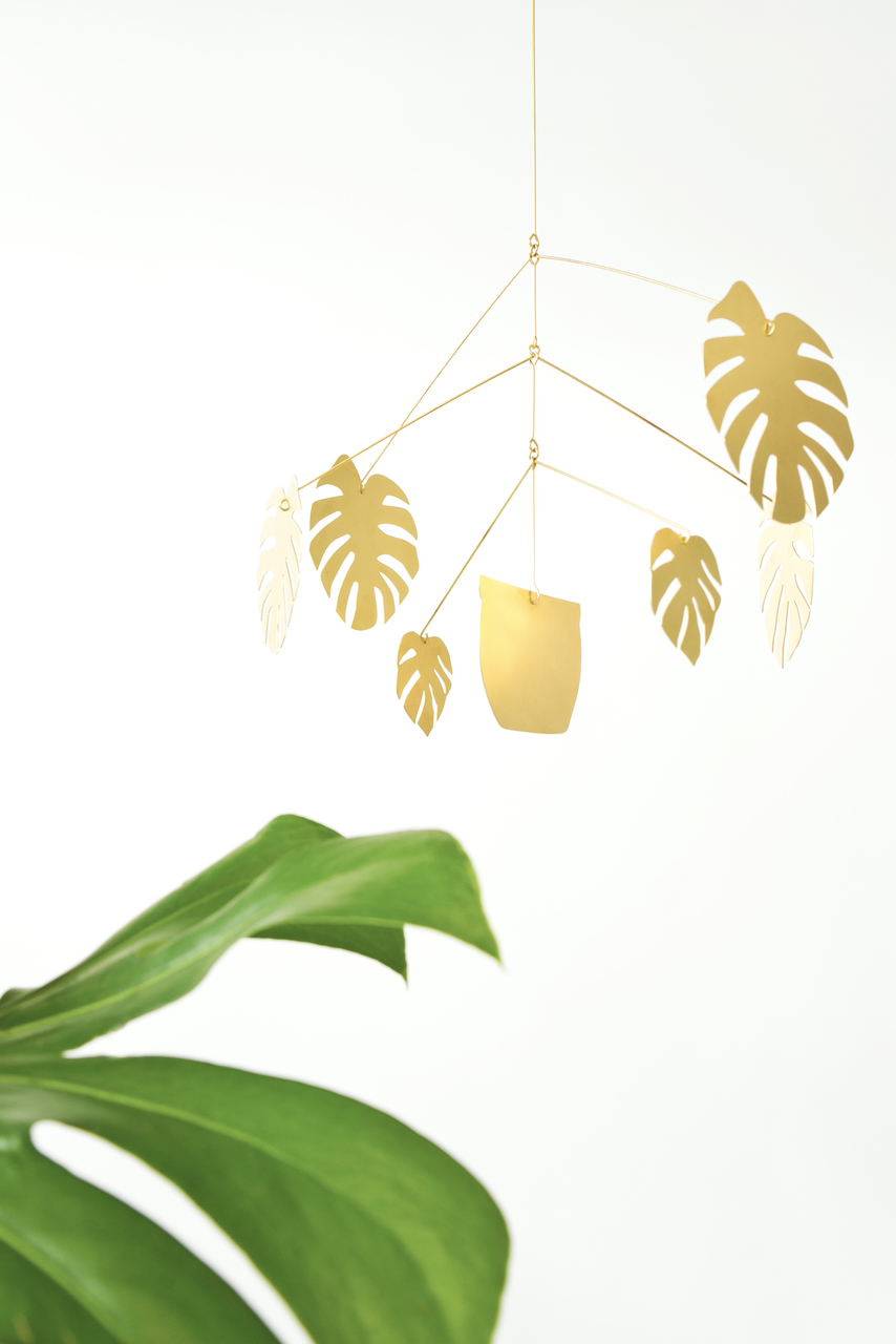 Natalie Joy  Monstera Deliciosa Mobile