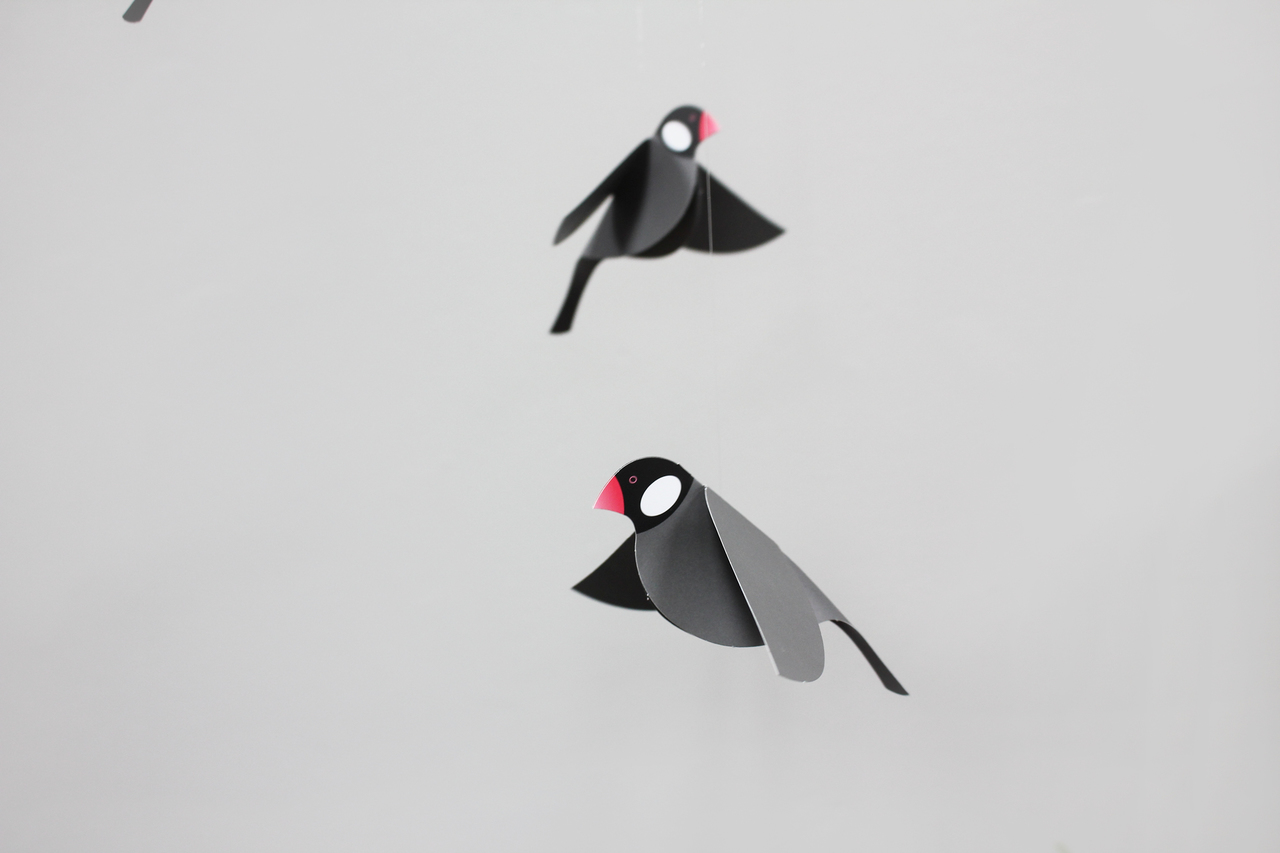 Joosepino Java Sparrow Mobile Black