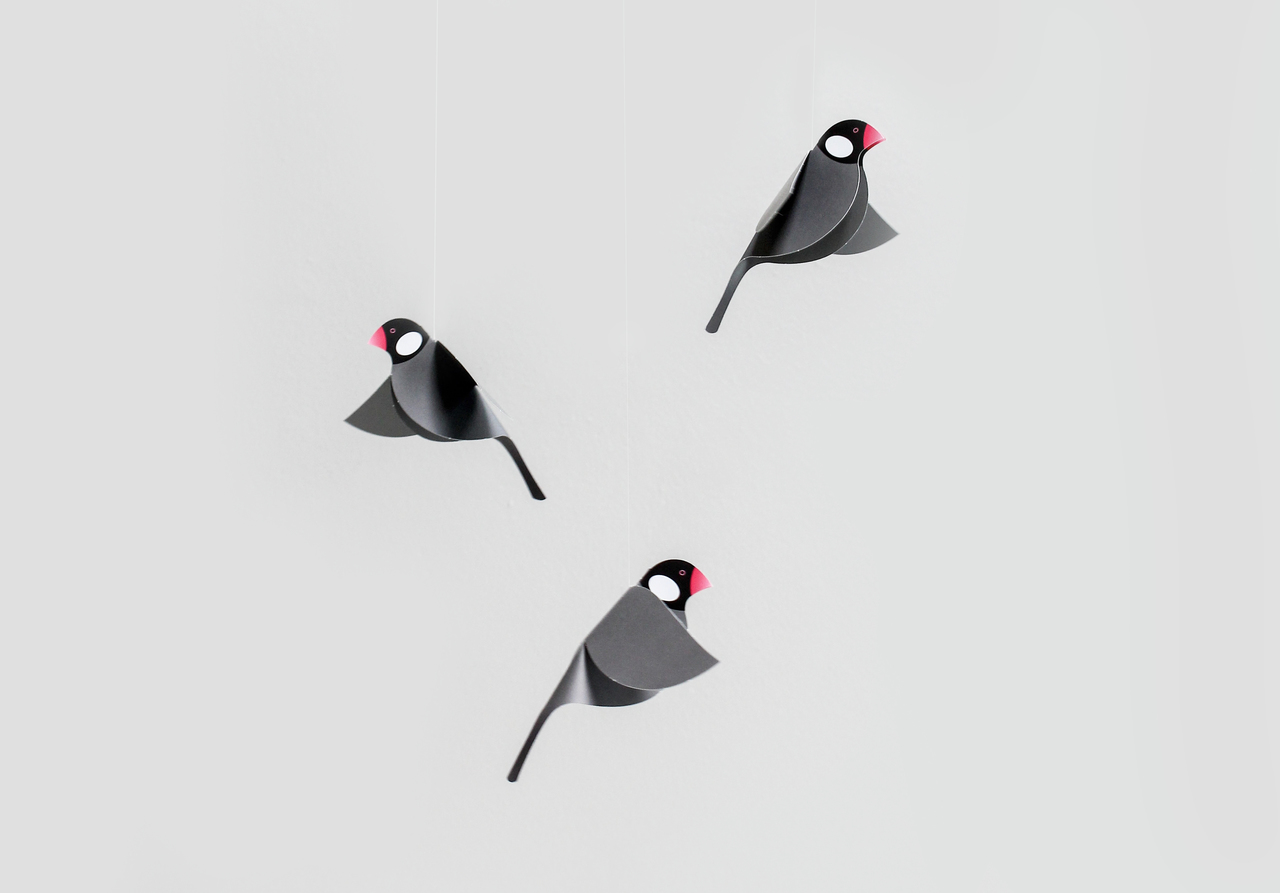 Java Sparrow Mobile, Black