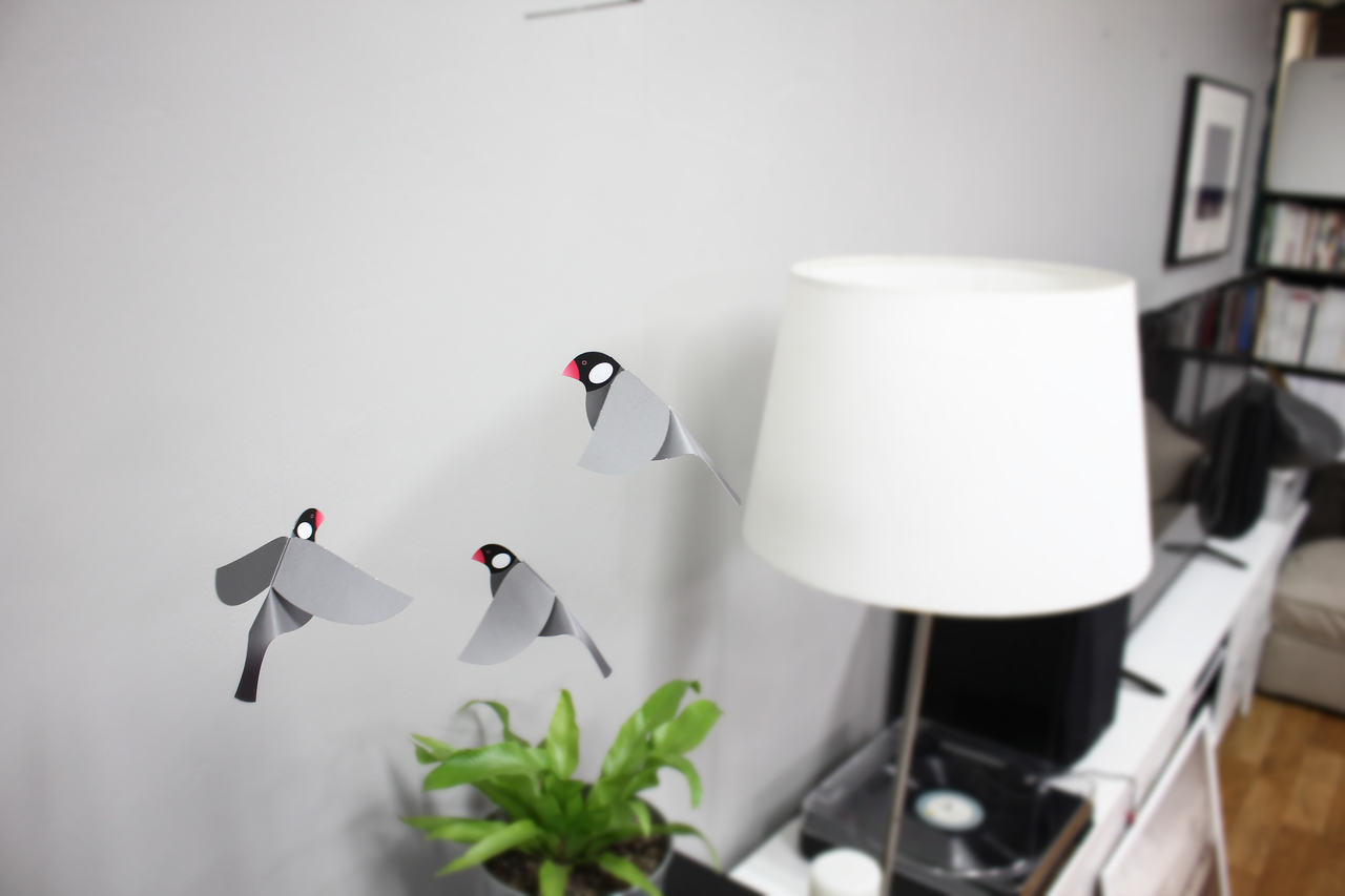 Joosepino Java Sparrow Mobile, Black