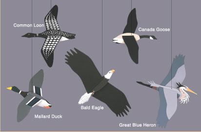 Wilderness Birds Mobile