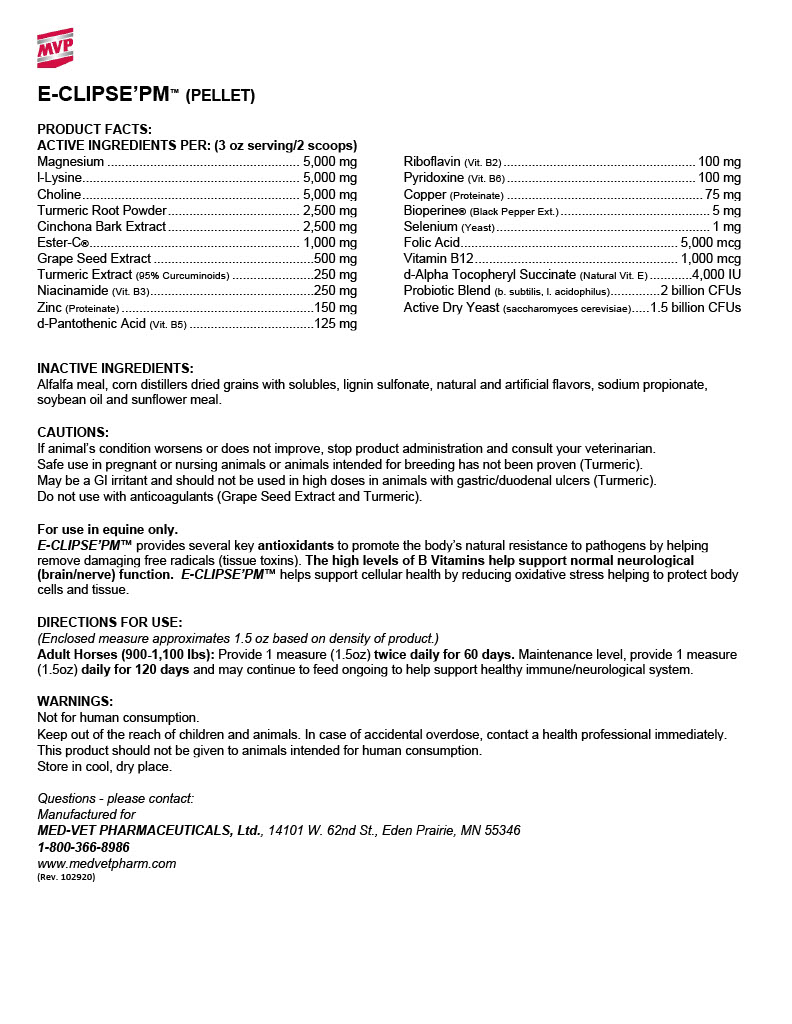 e-clipse-pm-rev.-102920-word-format.jpg
