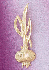 Onion Charm Bracelet or Pendant Necklace in Yellow, White or Rose Gold DZ-6902 by Dazzlers