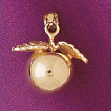 Apple Charm Bracelet or Pendant Necklace in Yellow, White or Rose Gold DZ-6905 by Dazzlers
