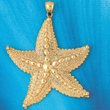 Starfish Charm Bracelet or Pendant Necklace in Yellow, White or Rose Gold DZ-85 by Dazzlers