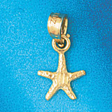 Starfish Charm Bracelet or Pendant Necklace in Yellow, White or Rose Gold DZ-90 by Dazzlers