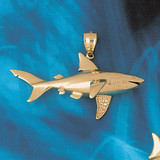 Shark Charm Bracelet or Pendant Necklace in Yellow, White or Rose Gold DZ-893 by Dazzlers