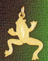 Frog Charm Bracelet or Pendant Necklace in Yellow, White or Rose Gold DZ-1586 by Dazzlers