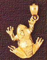 Frog Charm Bracelet or Pendant Necklace in Yellow, White or Rose Gold DZ-1587 by Dazzlers