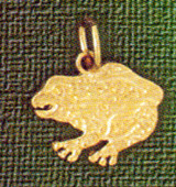 Frog Charm Bracelet or Pendant Necklace in Yellow, White or Rose Gold DZ-1599 by Dazzlers