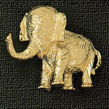 Elephant Charm Bracelet or Pendant Necklace in Yellow, White or Rose Gold DZ-2309 by Dazzlers