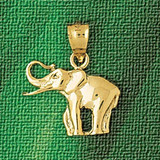 Elephant Charm Bracelet or Pendant Necklace in Yellow, White or Rose Gold DZ-2321 by Dazzlers