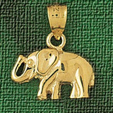 Elephant Charm Bracelet or Pendant Necklace in Yellow, White or Rose Gold DZ-2323 by Dazzlers