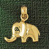 Elephant Charm Bracelet or Pendant Necklace in Yellow, White or Rose Gold DZ-2324 by Dazzlers