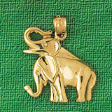 Elephant Charm Bracelet or Pendant Necklace in Yellow, White or Rose Gold DZ-2327 by Dazzlers