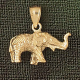 Elephant Charm Bracelet or Pendant Necklace in Yellow, White or Rose Gold DZ-2357 by Dazzlers