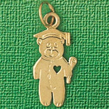 Teddy Bear With Heart Charm Bracelet or Pendant Necklace in Yellow, White or Rose Gold DZ-2510 by Dazzlers