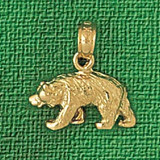 Wild Bear Charm Bracelet or Pendant Necklace in Yellow, White or Rose Gold DZ-2553 by Dazzlers