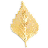 Birch Leaf Pin 24k Gold Dipped BF1376