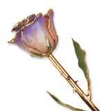 White & Blue Opal Rose Lacquer Dipped Gold Trimmed GM3735