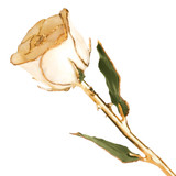 White Rose Lacquer Dipped Gold Trimmed GP9340