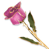 Lilac Pink Rose Lacquer Dipped Gold Trimmed GP9344