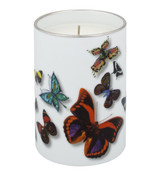 Vista Alegre Christian Lacroix Butterfly Parade Candle MPN: 21118159