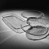 Annieglass Edgey Round Bowl 13 1/2 Inch - Platinum MPN: E165P