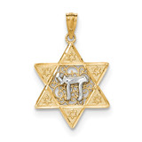 Polished Star of David with Chai Pendant 14k Two-Tone Gold MPN: K5707 UPC: 886774618975