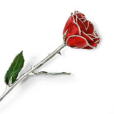 Lacquer Dipped Silver Trimmed Red Rose, MPN: GM16743, UPC: 812465021304