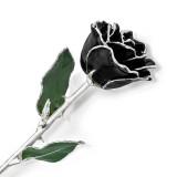 Lacquer Dipped Silver Trim Black Rose, MPN: GM16750, UPC: 812465021489
