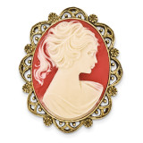 2142 Boutique Jewelry Fashion Acrylic Cameo Brooch Gold-tone BF2534