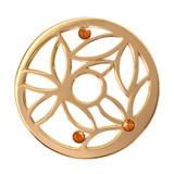 Nikki Lissoni Magic Bamboo Gold Plated 33mm Coin, MPN: C1095GM UPC: 8718627462324