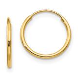 Madi K Endless Hoop Earrings - 14k Gold SE194
