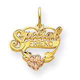 Special Friend Heart Charm 10k Gold 10YC123
