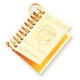 Passport Charm 14k Gold A1548