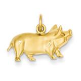 Pig Charm 14k Gold C1160